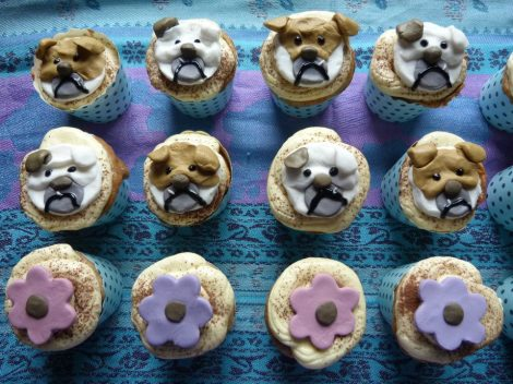 Bulldogs and flowers cupcakes